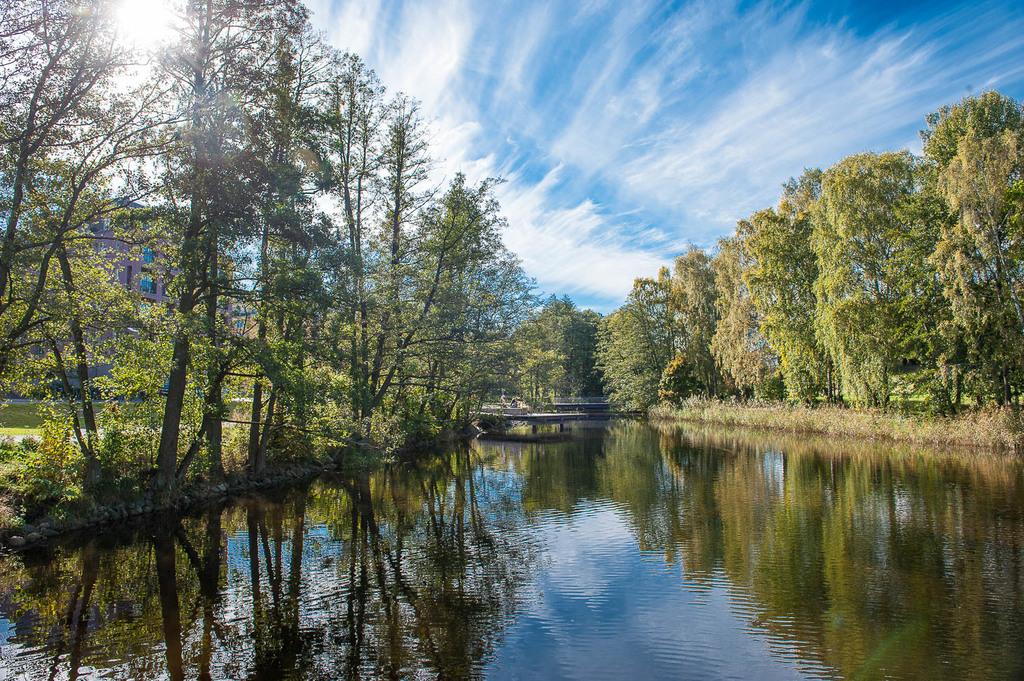 Vacker natur i Norra Djurgårdsstaden