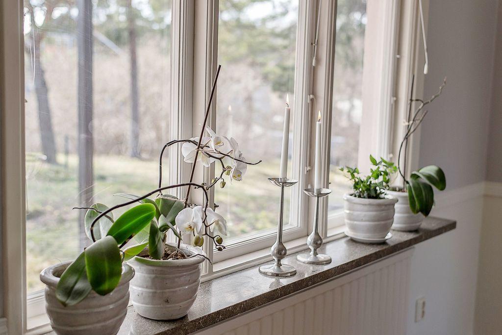 Fönstret i matrummet
