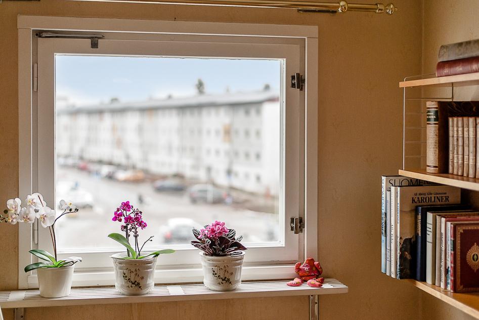 Fönster i lilla sovrummet