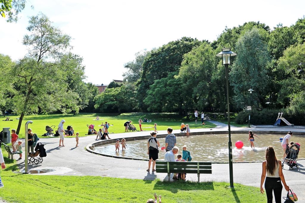 Svandammsparken sommartid