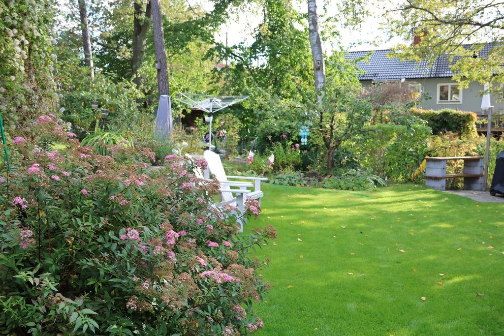 Del av trädgården