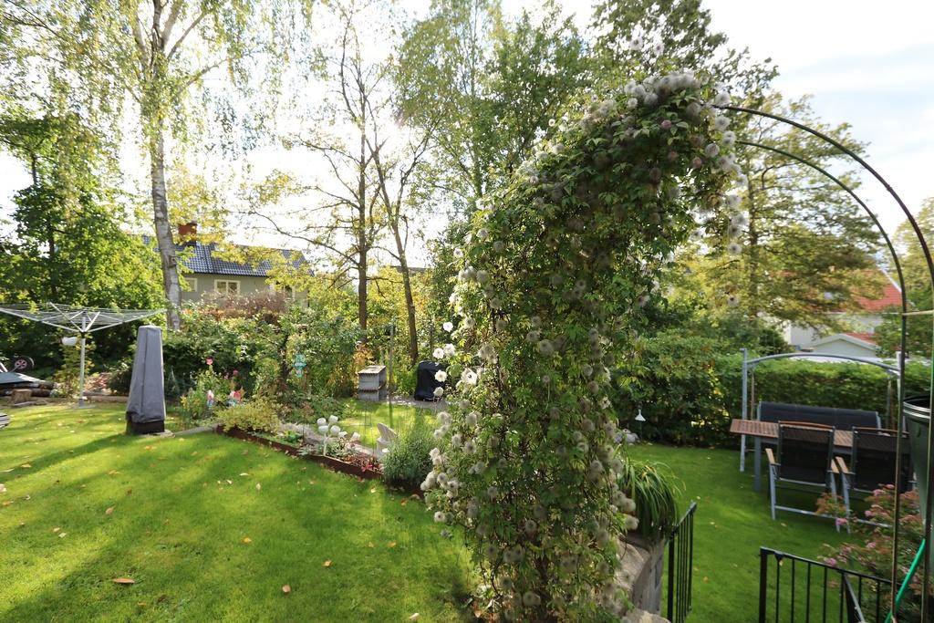 Fin trädgård