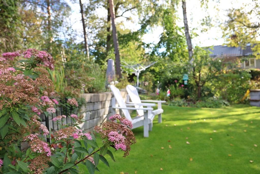 Nedre delen av trädgården