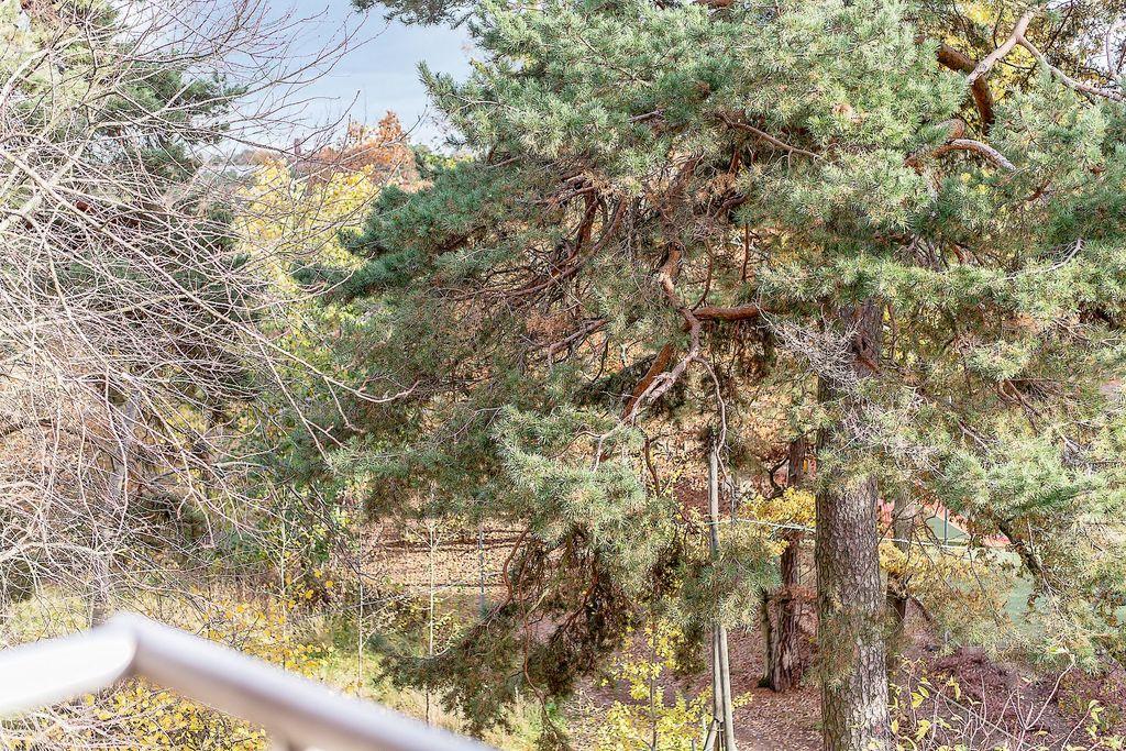 Utsikt från balkongen över allmänning