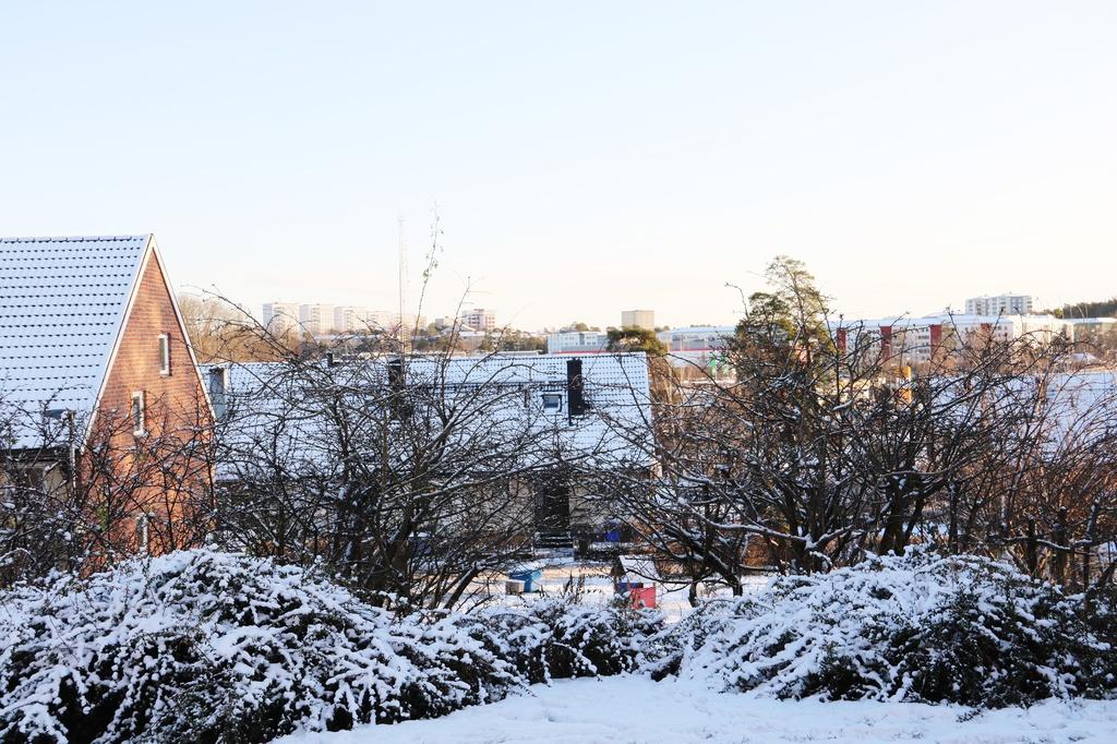 Utsikten från trädgården