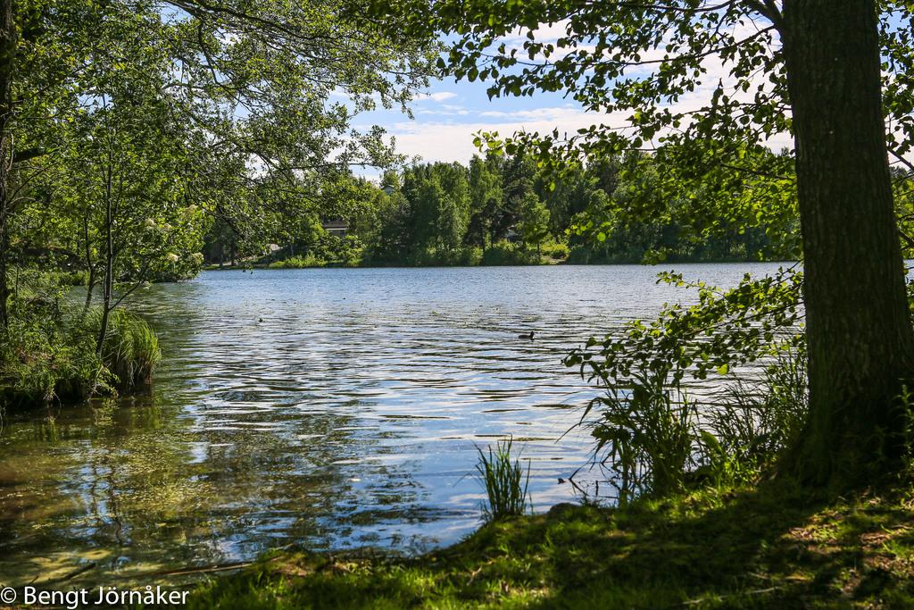 Långsjön 4