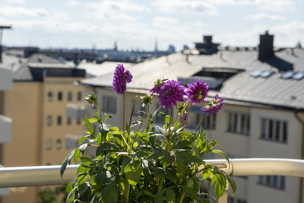 Fin utsikt från balkongen